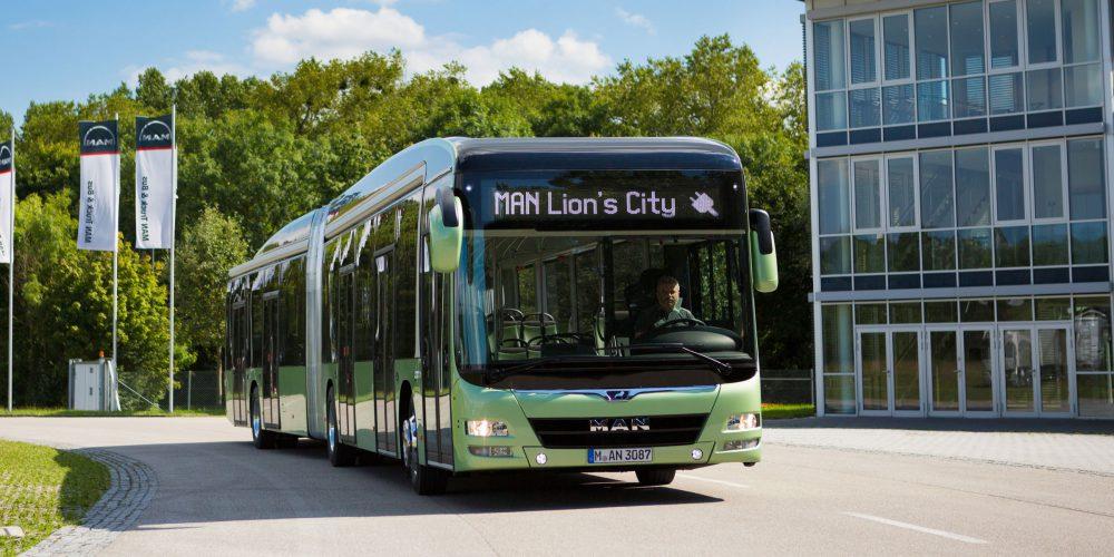 man-lions-city
