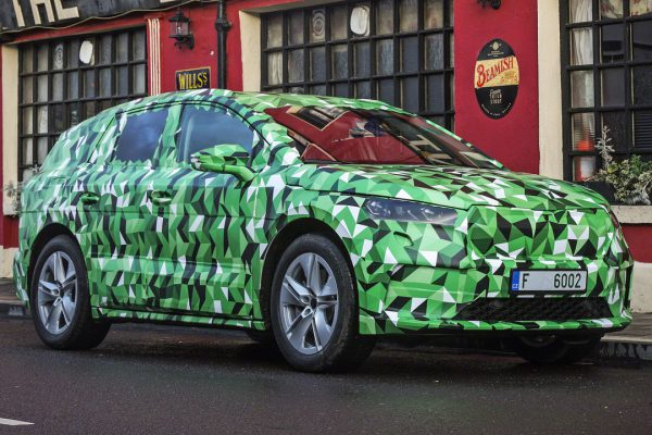 Das Ökosystem des Elektroautos fördern